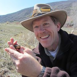 Utah Division of Wildlife Resources Director Greg Sheehan with a frog found during a survey in Utah.