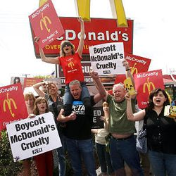 Chrissie Hynde of the group Pretenders is held up by PETA Vice President Dan Mathews, center, as they join other PETA supporters Monday at a Salt Lake City McDonald's to protest the company's perceived treatment of chickens.