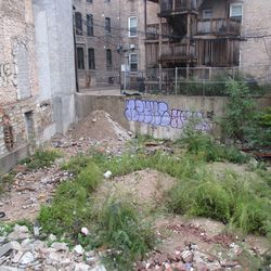 The vacant lot, still very much vacant