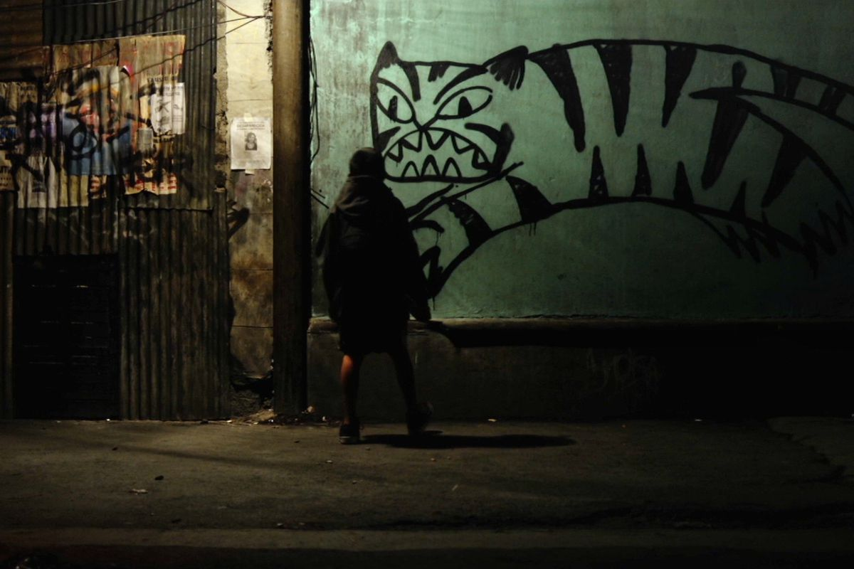 Tigers Are Not Afraid review: a poignant fantasy about the Mexican ...