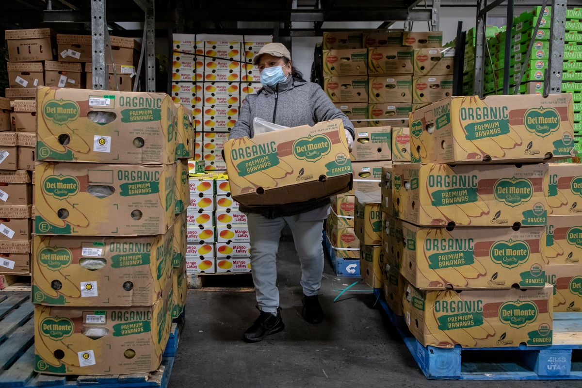 A woman moves cases of bananas in a refrigerated warehouse