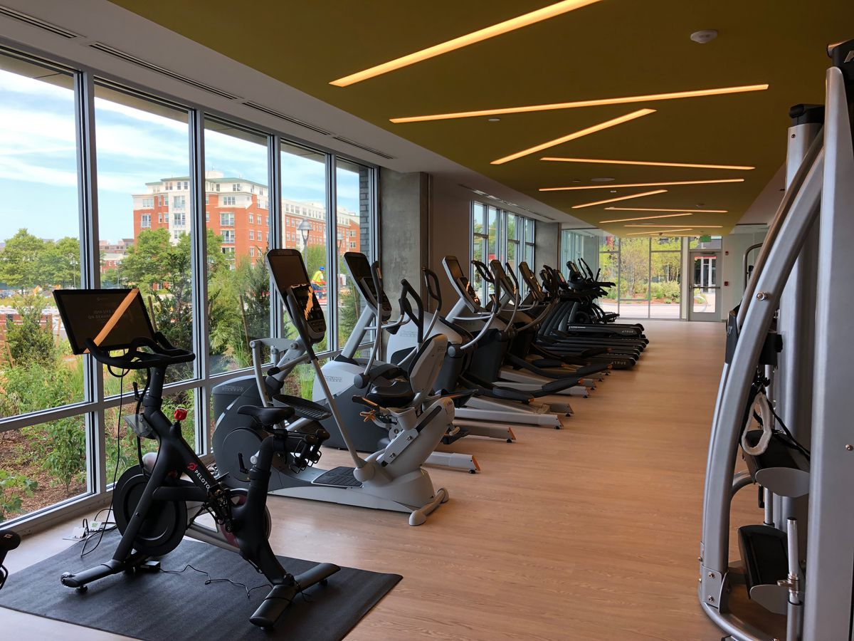 A run of step machines, exercise bikes, and treadmills facing a window in a gym.