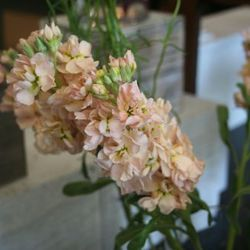 <strong>Have you noticed any color trends in wedding florals?</strong> Obviously, you see a lot of whites. Pink has probably been the predominant color for as long as I've been doing wedding flowers. Pink, or green and white bouquets. In the fall we get