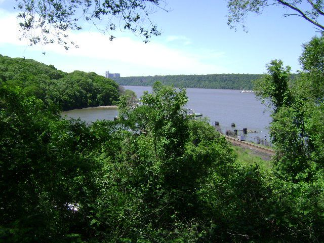 Several green trees dot the waterfront of the Hudson River.