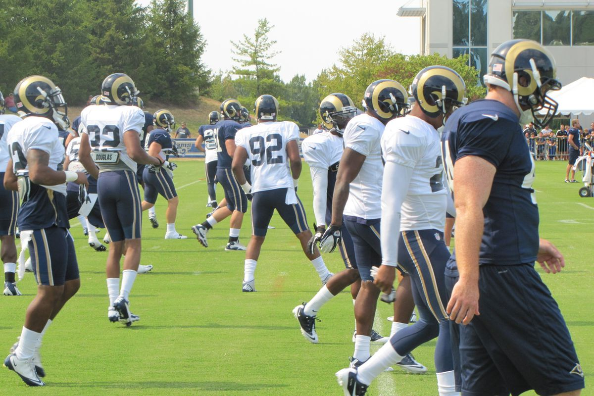 The St. Louis Rams made a pair of roster moves on Friday, dropping a punter and adding a defensive tackle.