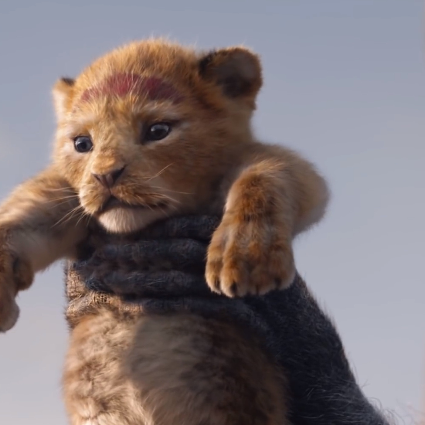 watch the very first trailer for disney s the lion king remake the