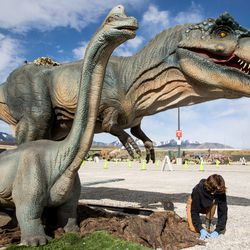 """Brittney Manahan puts the final touches on a display of dinosaurs ahead of the opening of """"Jurassic Quest Drive Thru"""" at the USANA Amphitheatre in West Valley City on Friday, April 23, 2021."""