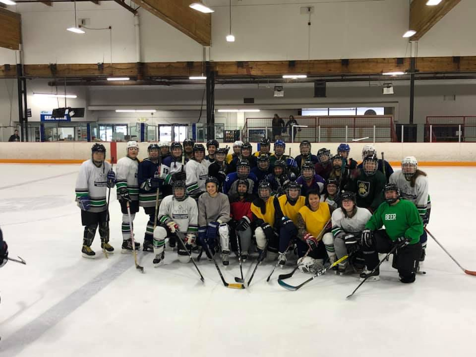SWHC Players on the ice