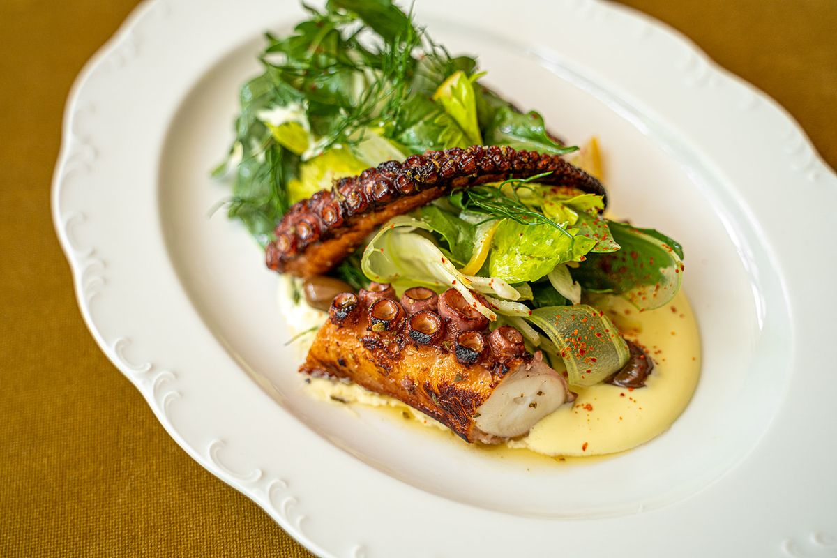 Charred octopus with fennel salad and Greek skordalia on an oval white plate