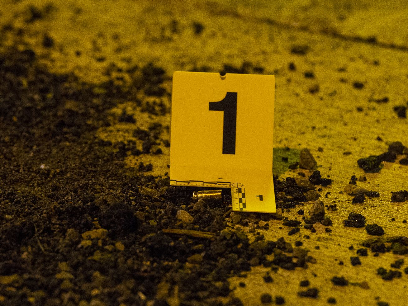 A fatal shooting left one man dead Oct. 24, 2020 in the 1300 block of North Harding Avenue.