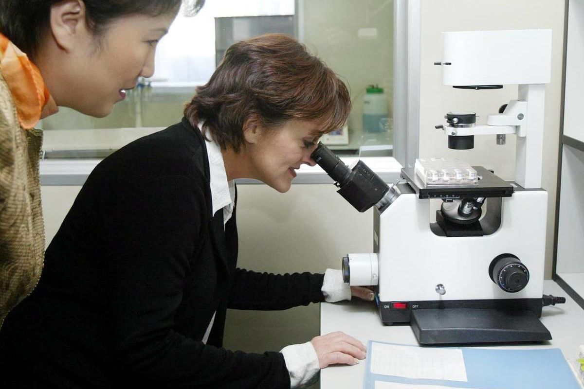 Linda Wells, of Albuquerque, New Mexico, looks through a microscope at a sample of the stem cells which could save her daughter Kailee\'s life, at a laboratory in Tianjin, China Sunday Nov. 16, 2003.