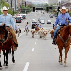 A group, including Gov. Spencer Cox and first lady Abby Cox, drive a small herd of Texas longhorn cattle along North Temple toward the Utah State Fairpark in Salt Lake City on Monday, July 19, 2021. The drive was held to celebrate the return of the Days of '47 Cowboy Games and Rodeo.