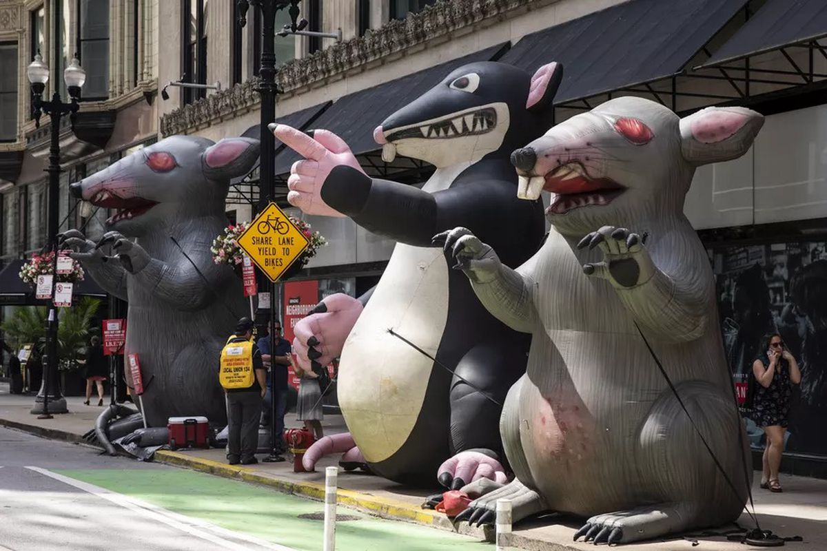 Scabby the Rat: Leave him alone