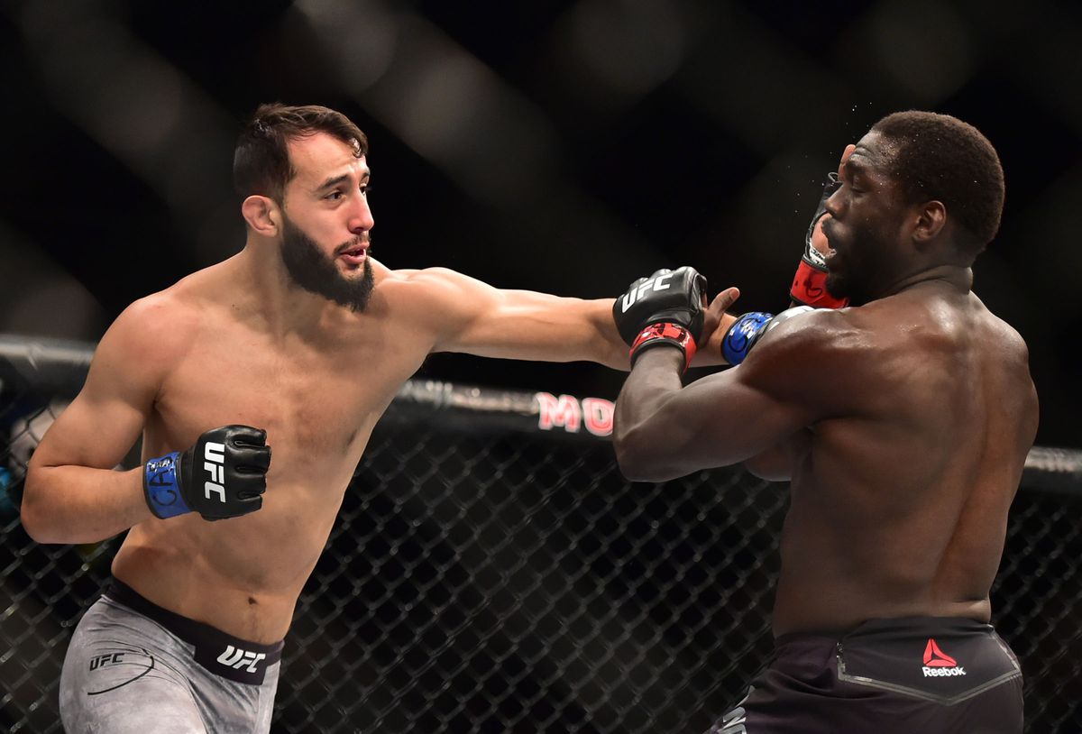 Dominick Reyes and Jared Cannonier