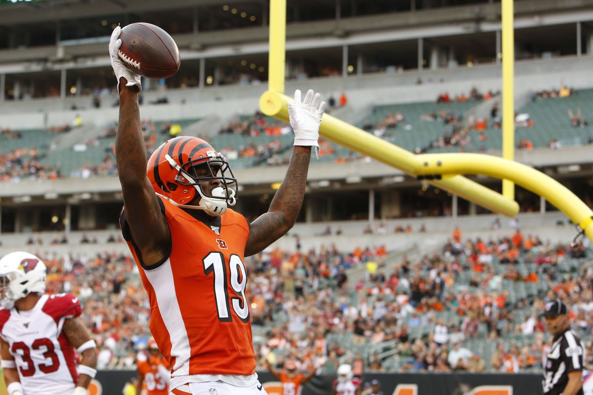 Cincinnati Bengals wide receiver Auden Tate reacts after scoring a touchdown against the Arizona Cardinals during the second half at Paul Brown Stadium.