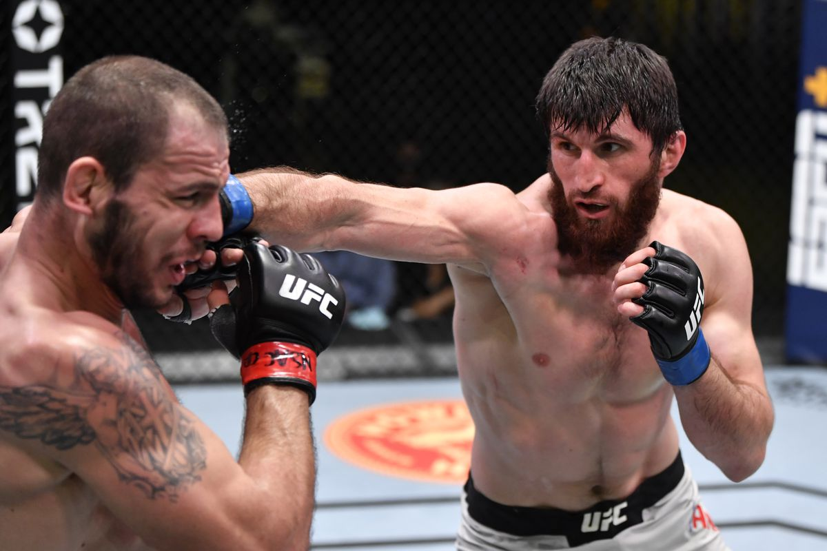 UFC Vegas 20 results: Magomed Ankalaev wins sixth straight fight with unanimous decision over Nikita Krylov - MMA Fighting