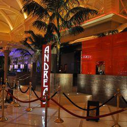 Andrea's vertical sign is the casino floor beacon.