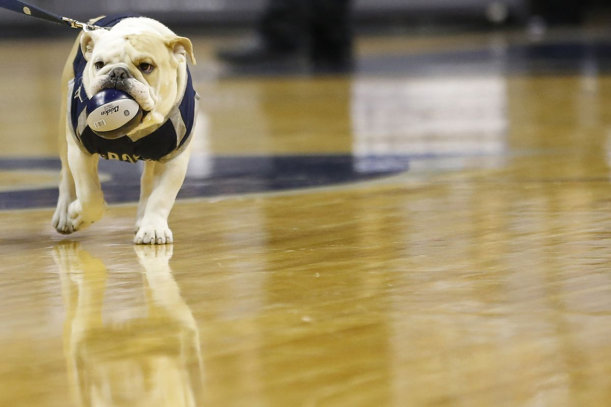 The best bulldog mascot in the conference
