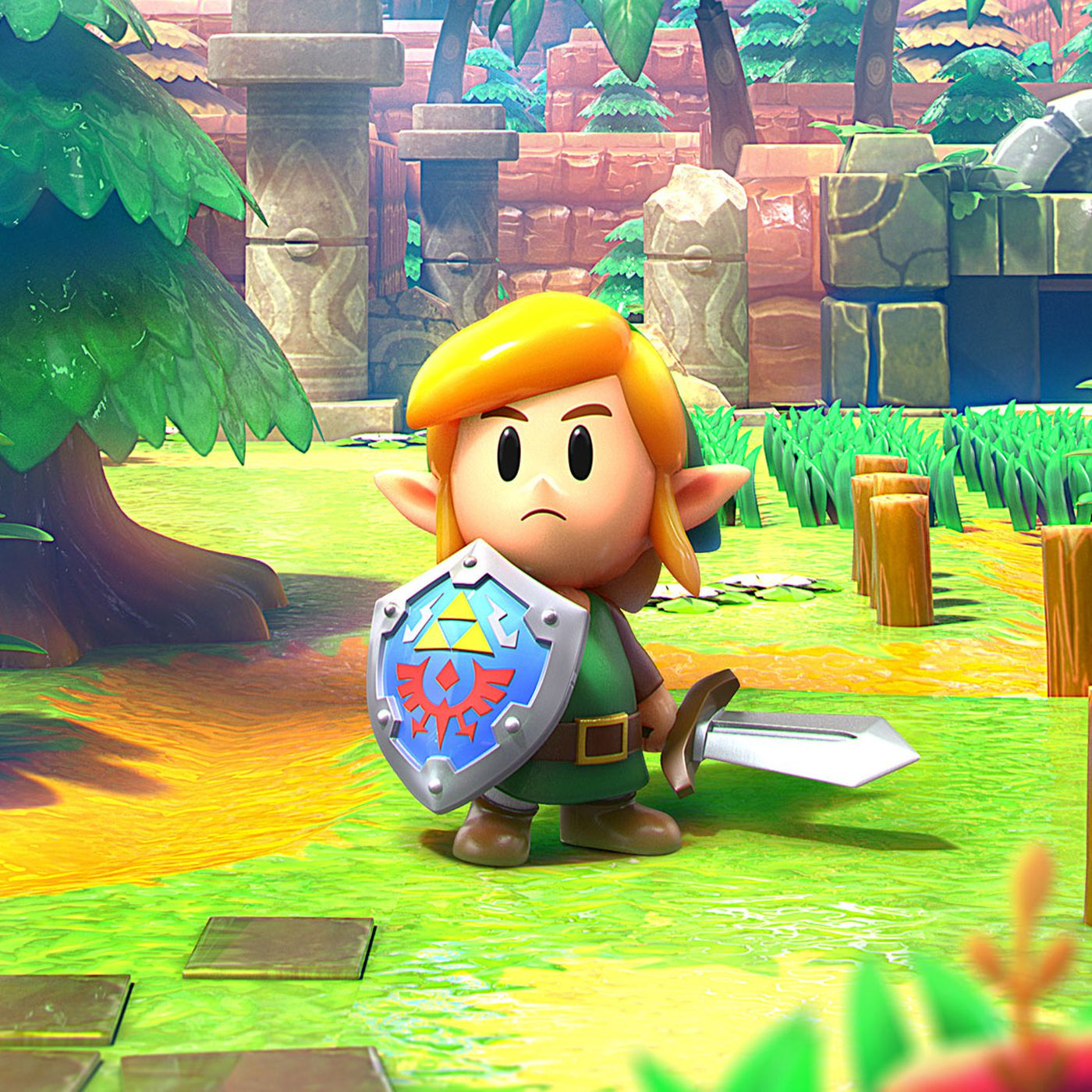 Link S Awakening Switch Guide And Walkthrough Polygon