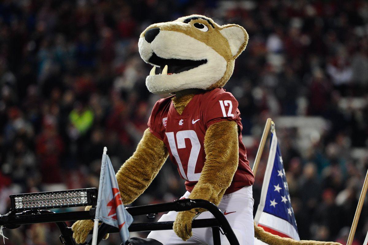 NCAA Football: Arizona at Washington State