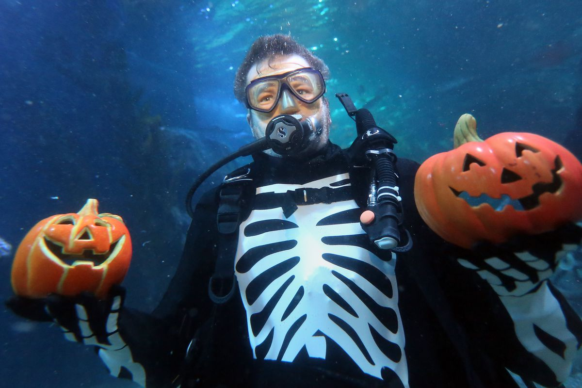 Berlin Sea Life Celebrates Halloween