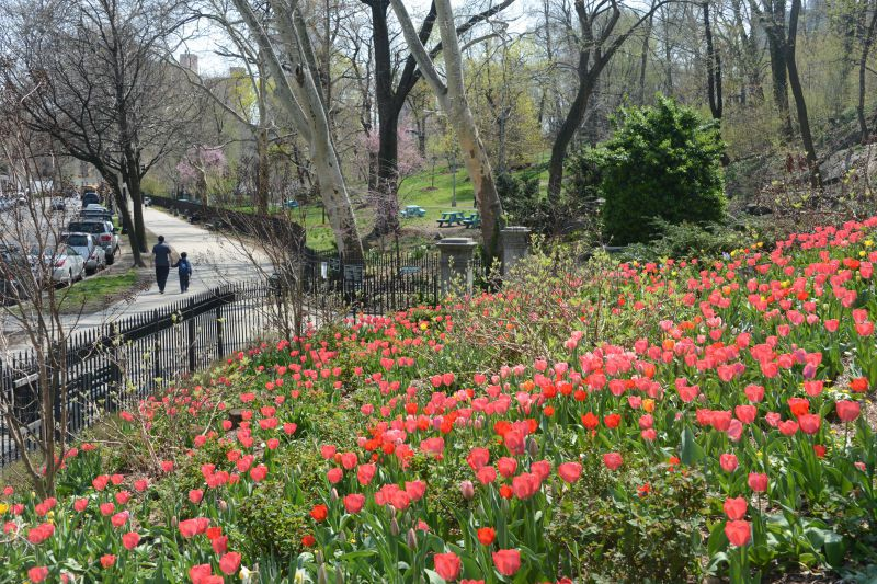 A park with colorful flowers. There is a path where people are walking. There are many trees.