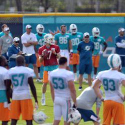 Jul 26, 2013; Davie, FL, USA; Miami Dolphins quarterback Ryan Tannehill (17) throws a pass during training camp at the Doctors Hospital Training Facility at Nova Southeastern University.
