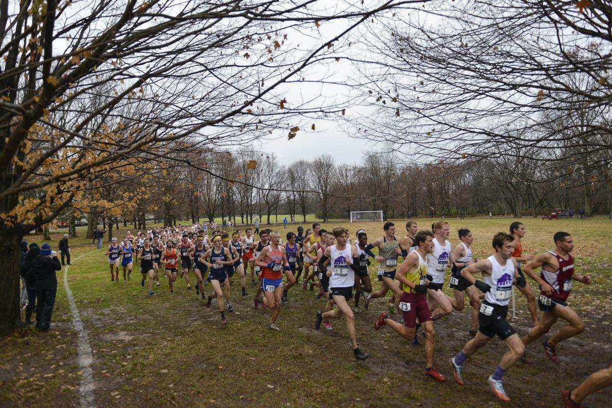 FloSports: FloTrack NCAA DIII Cross Country Championships