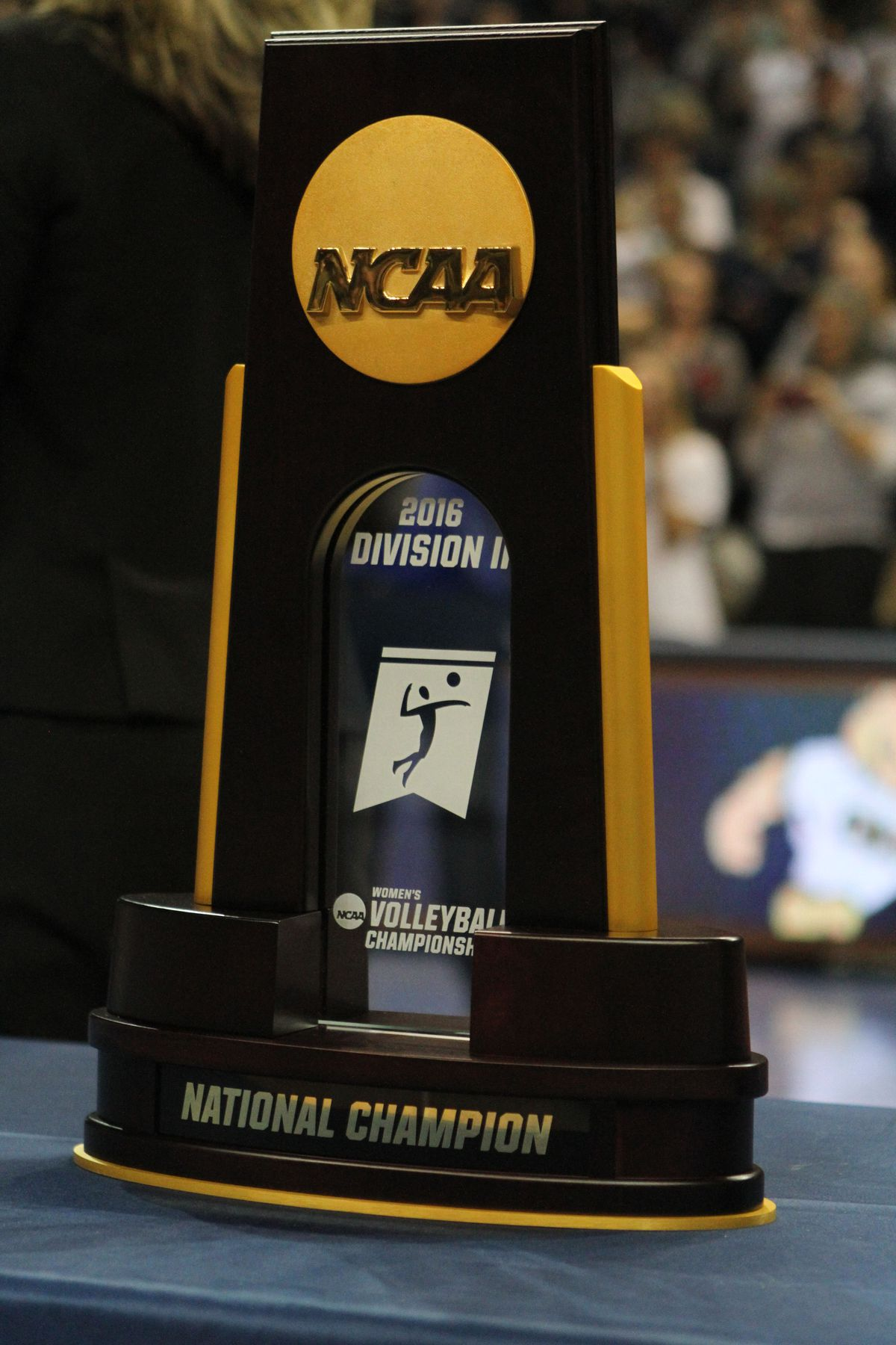 NCAA Division 2 Women's Volleyball Championship