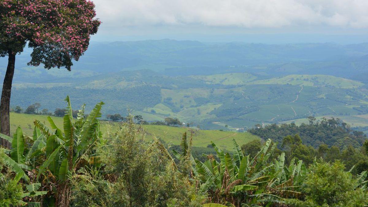 Fazenda Ambiental Fortaleza