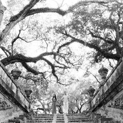 """""""But <i>everyone</i> takes there engagement photos in <a href=""""http://vizcaya.org/home.asp"""">Vizcaya</a>,"""" you might contest, and with valid reason too, but there are so many jaw-dropping corners within the estate's gardensthat it's possible to pose for an"""