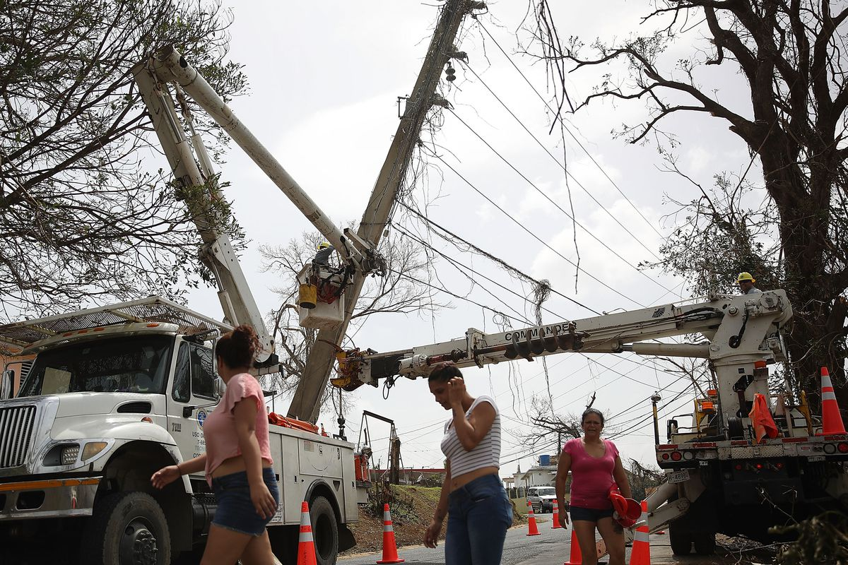 Puerto Rico just hired 2 contractors with little experience