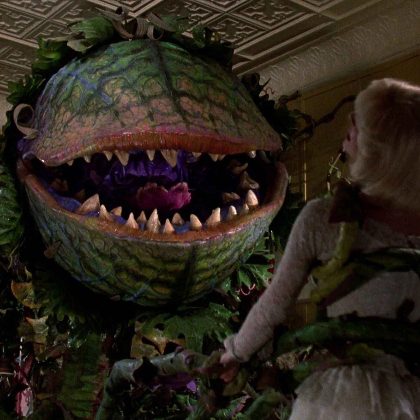 Chris Evans In A Little Shop Of Horrors Remake Here S Our Dream