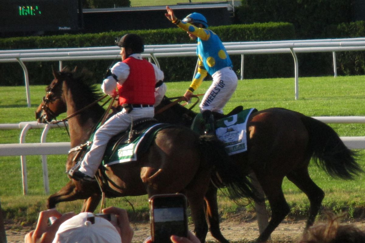 American Pharoah parades by the Belmont Grandstand after winning the Triple Crown on June 6, 2015