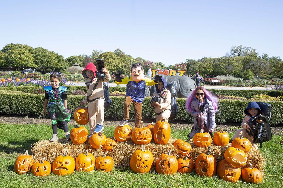 Fall fun at Brookfield Zoo.