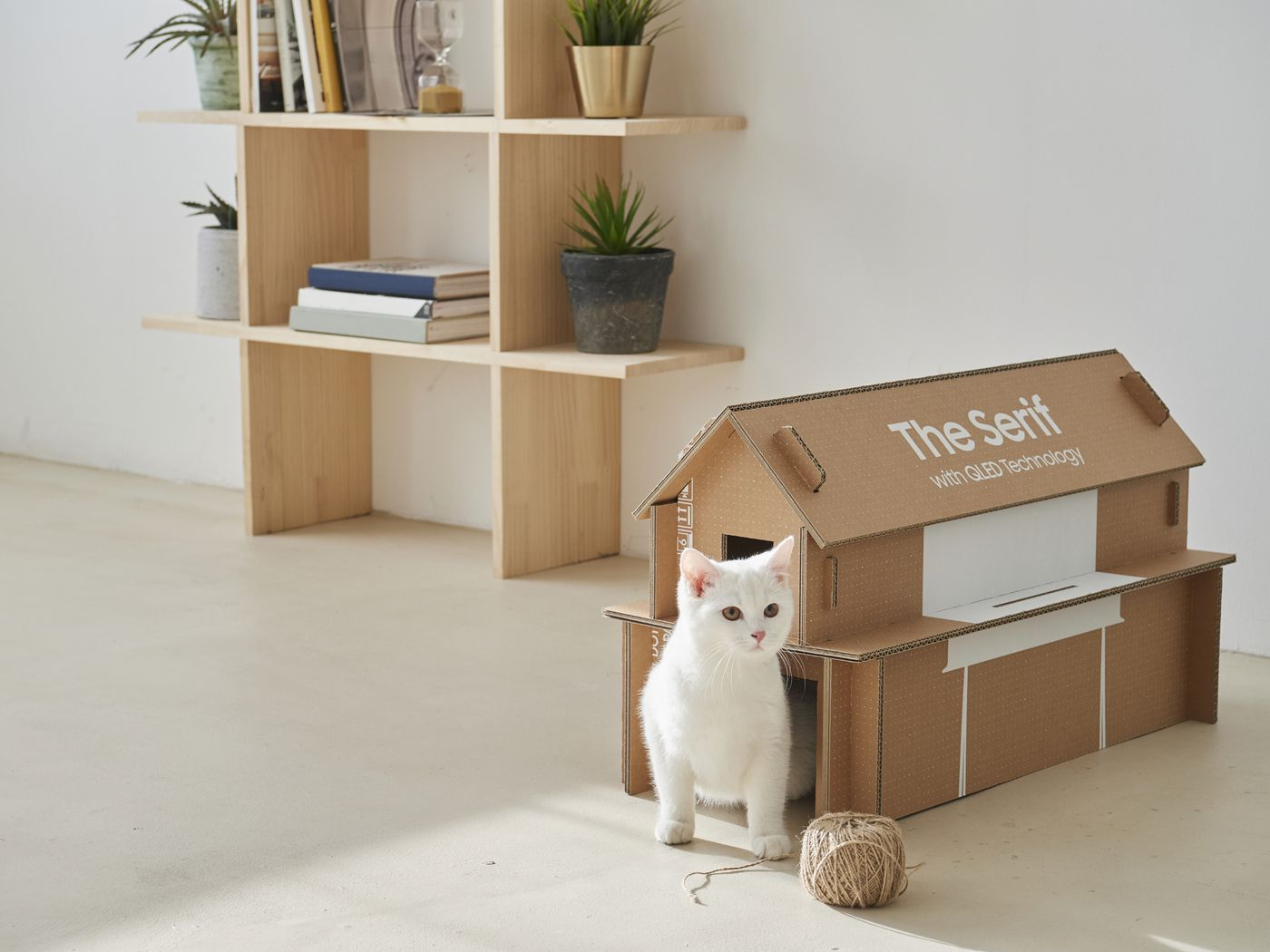 Samsung S New Tv Packaging Can Be Recycled To Make A Cat House The Verge
