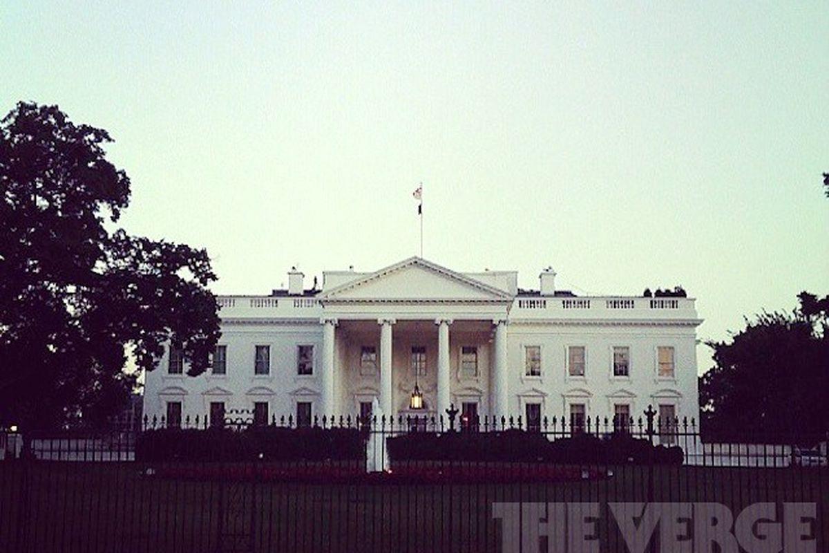white house verge stock