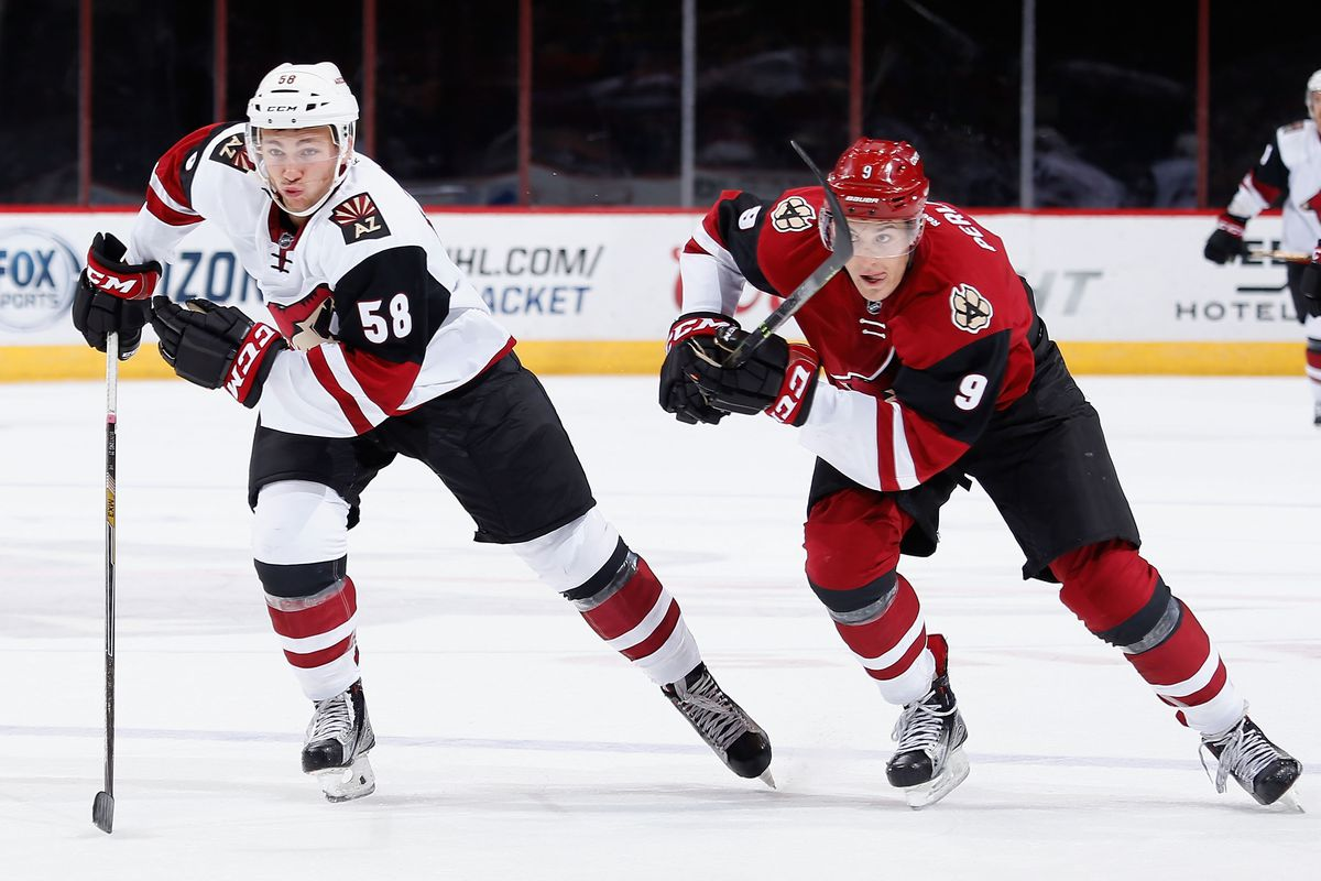 arizona coyotes development camp highlighted team's bright future