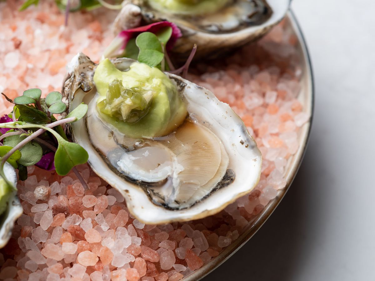 pikoh oysters on pink salt