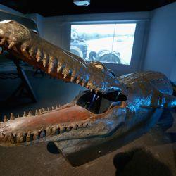 Crocodile submarine