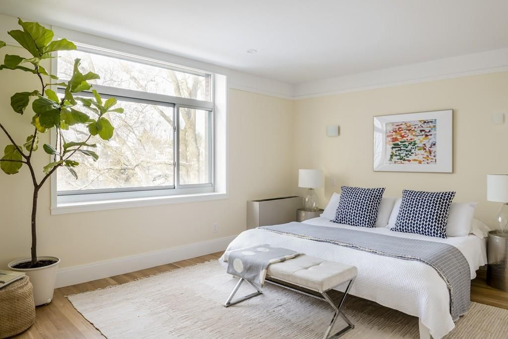 A bedroom with a bed and a large houseplant and window.