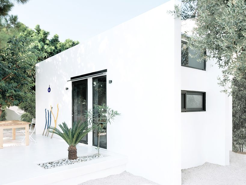 Small box dwelling with white concrete walls and windows surrounded by olive trees.