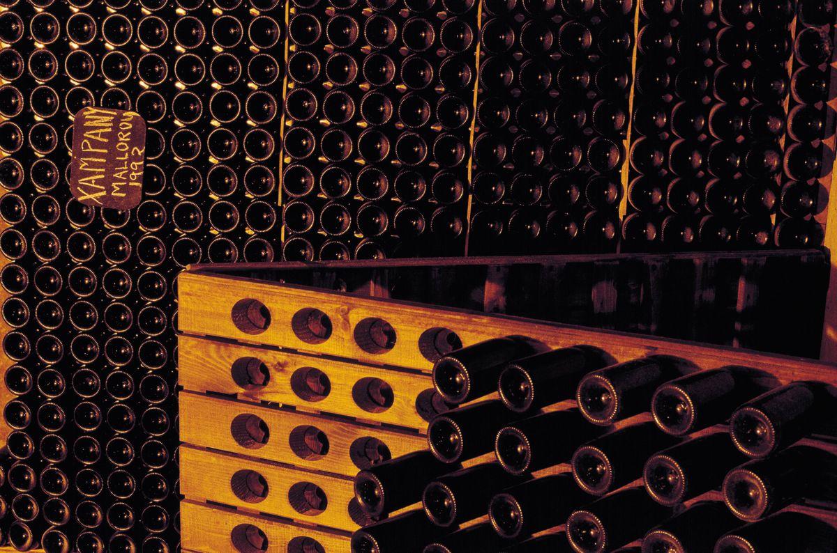 Jaume Masquida cellars, Majorca island Detail of the wine rack in the cellar