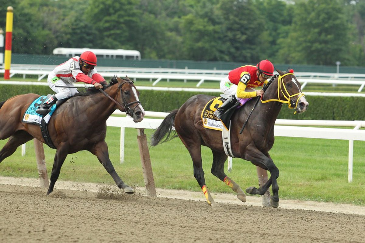 Currency Swap and Trinniberg will clash in the Grade 1 King's Bishop at Saratoga on Saturday, August 25th.