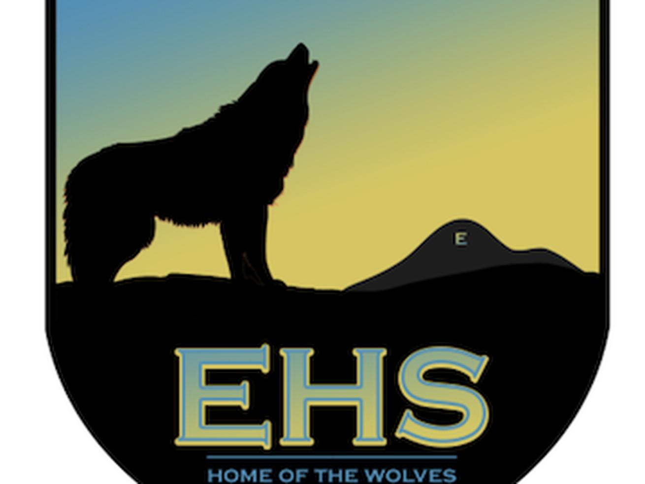 High school football: Enterprise Wolves 2020 preview