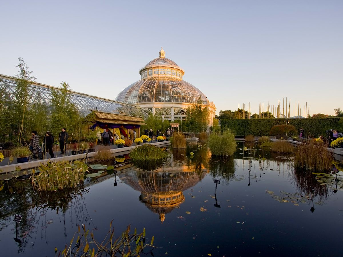 A glass greenhouse at New York Botanical Garden in the autumn. The greenhouse has a domed roof. A pond lined with trees and shrubs is in front of the building.