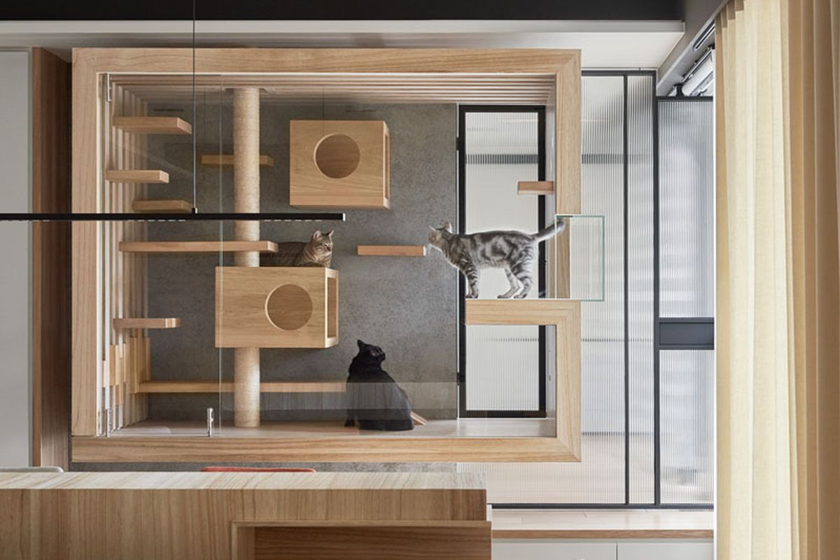 innovative modern cat furniture | World's fanciest cat cage looks like a work of art - Curbed