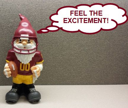 Gnome Feel The Excitement