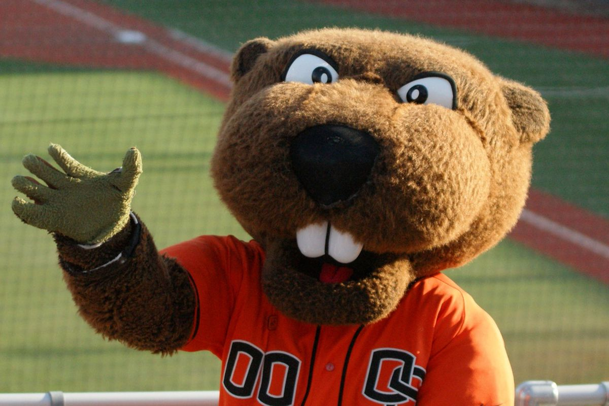 Its a sunny day, great for Beaver baseball! <em>(Photo by Andy Wooldridge)</em>