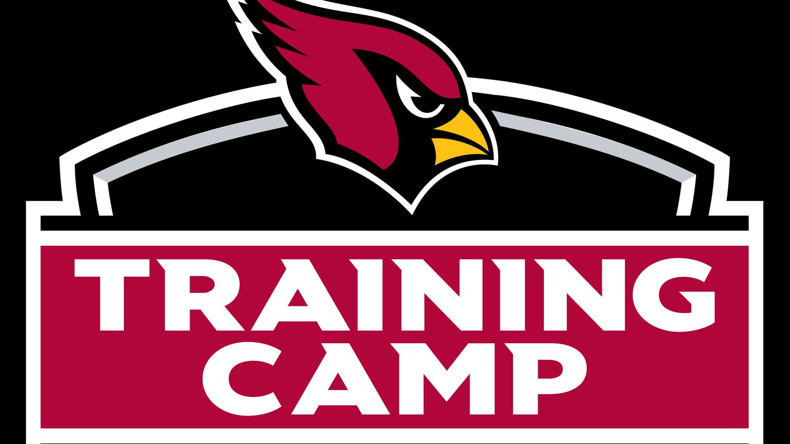 Arizona Cardinals 2017 Training Camp Times Parking Events Kids Food And More